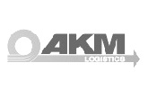 ООО «АКМ Лоджистикс»
